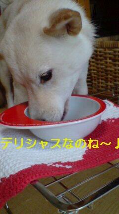 食べ盛り(o^-^o)