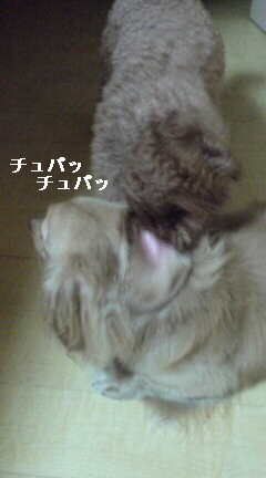 おいちぃ〜〜(<br />  ≧ε≦)