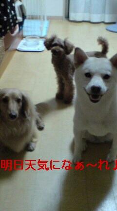 あちゃ〜〜(^_^;)