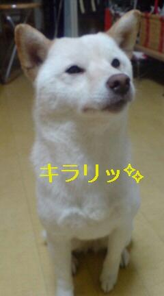 スッキリ、ピカリ☆